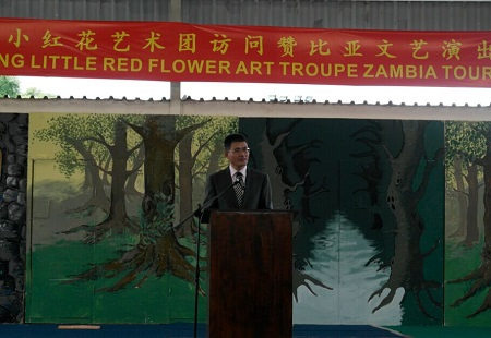 Nanjing Little Red Flower Art Troupe Successfully Performs In Lusaka Zambia
